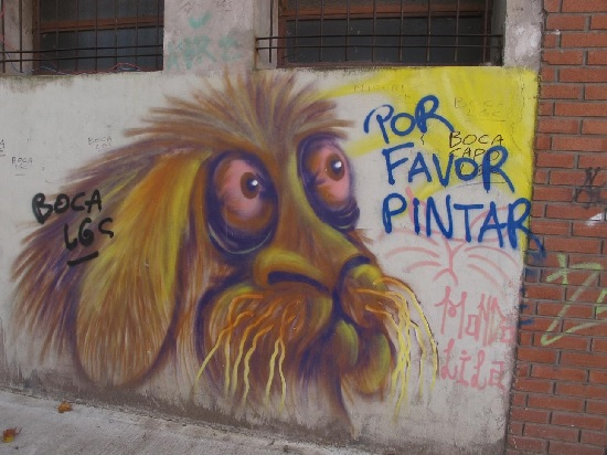 Figure 5: Boca Juniors Tags around the face of the dog.