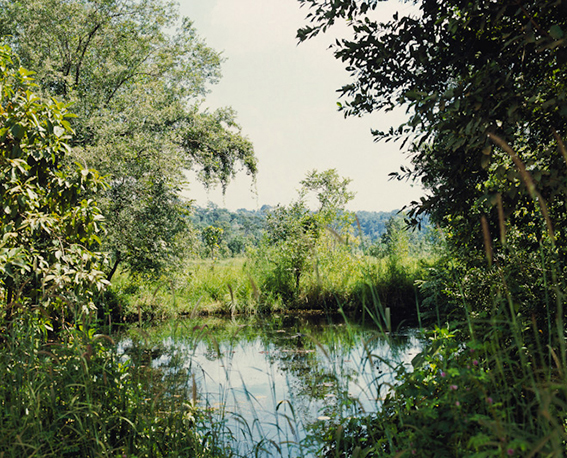 Vandy Rattana - Bomb Ponds (2009)